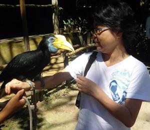 a KC fågel 2